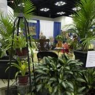 Prayer Garden at General Convention