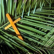 Palm Sunday Lectionary 2014