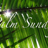 Palm Sunday – Year C